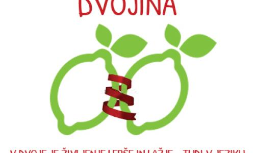 Dvojina v slovenščini